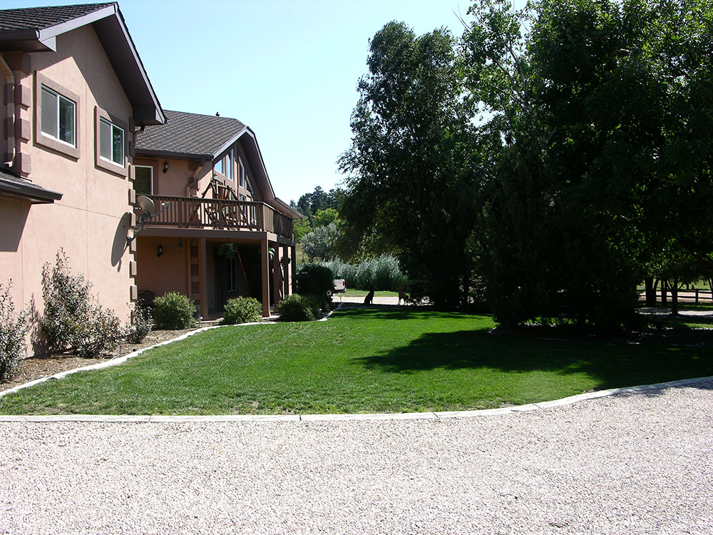 Tree Fertilization colorado springs