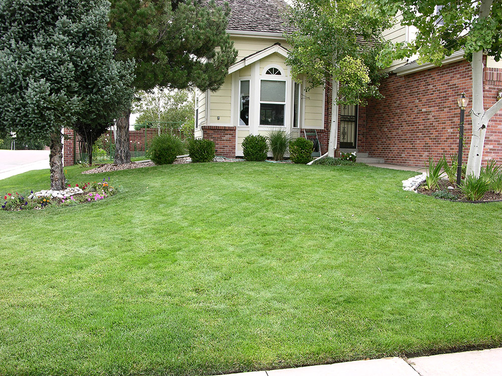 Colorado Springs Lawn Aeration services