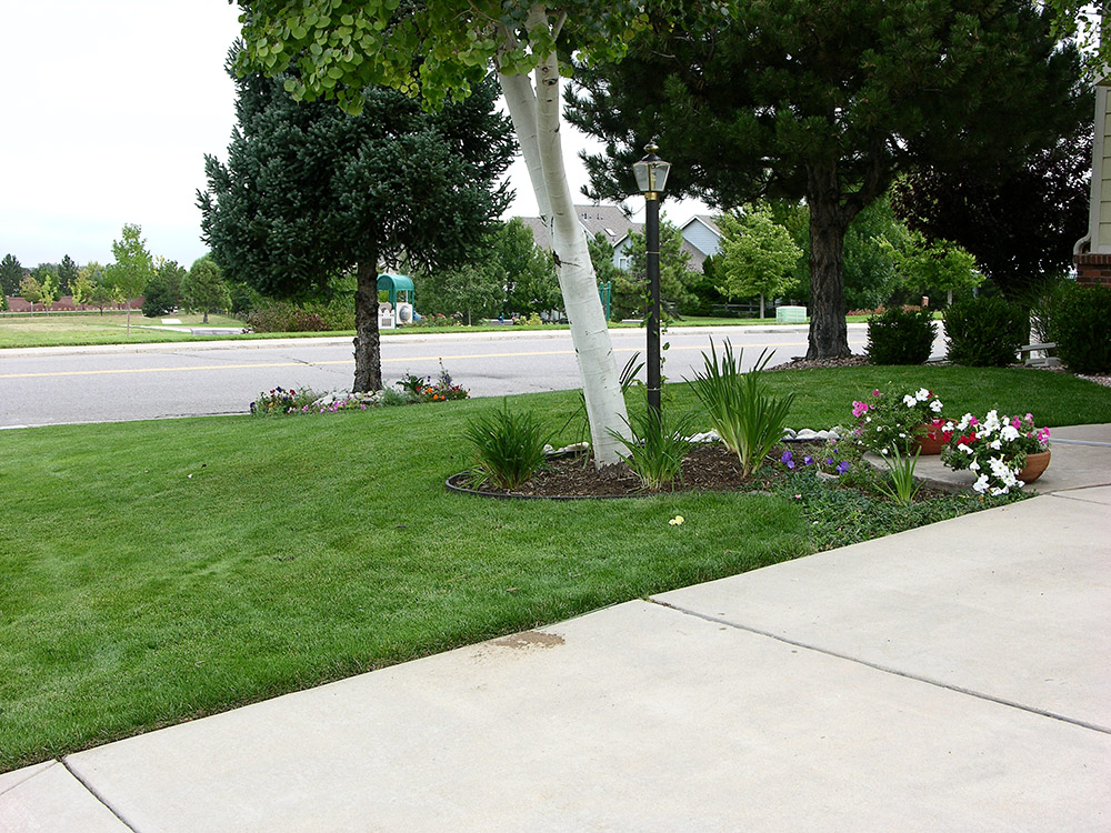 Colorado Springs Aeration services